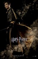 Goblet of fire poster (6)