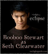 Booboo-seth-graphic