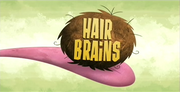 46-1 - Hair Brains