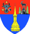 Actual Maramures county CoA