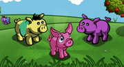 Breeding Pigs-icon