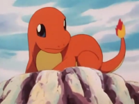 EP011 Charmander en una roca