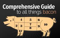 Bacon-guide