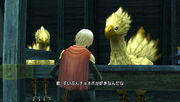 Chocobo type-0