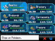 Equipo Pokmon NB
