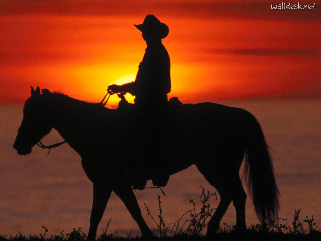 http://images2.wikia.nocookie.net/__cb20110425171912/reddeadredemption/images/9/9a/Santa-Cruz-Cowboy,-California.jpg