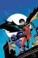 Robin Tim Drake 0020