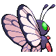Butterfree M GenIV Shiny Back