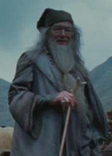 Dumbledores walking stick