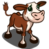 Hereford Calf-icon
