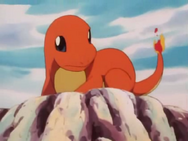 Damian Charmander