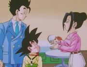 Gohan, his brother, and his mom