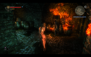 Witcher2-aryan-burning-the-castle