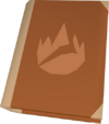 Firemaking tome detail