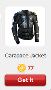 RV Carapace Jacket
