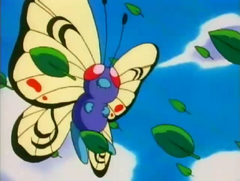 EP101 Butterfree de alas distintas