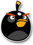 Negro bird.jpg