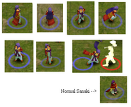Model sanaki2