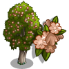 Broom Tree-icon