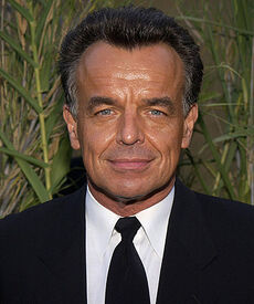 RayWise