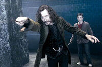 Sirius-black