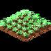 Verde daisies.png