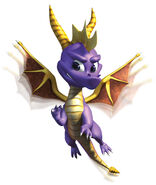 Spyro flap