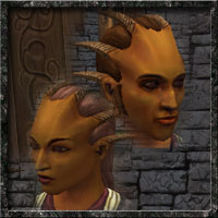 Shar race icon
