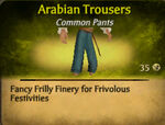Arabian Trousers