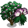 Mimosa Silk Tree-icon