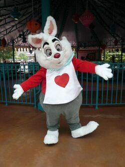 White Rabbit HKDL