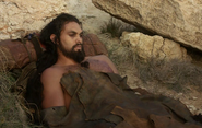 Drogo