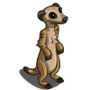 Meerkat-icon