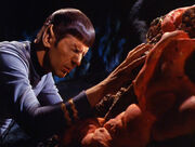Spock and Horta mind meld