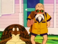 Turtle&amp;Roshi