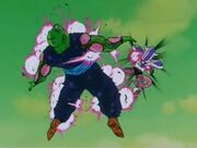Piccolo vs Freezer5xd