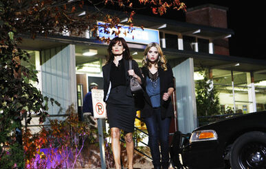 PLL PhotoGalleries-09