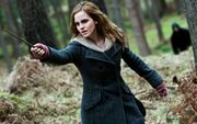 Emma watson in hp7-1280x800