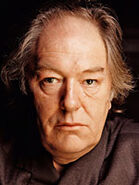Bgambon0457270 150x200