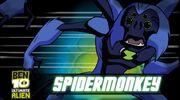 Spidermonkey GC.jpg