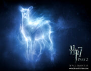 My patronus
