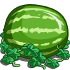 Super Watermelon-icon