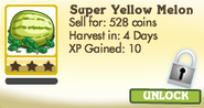 Super Yellow Melon Locked