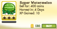 Super Watermelon Unlocked