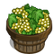 Chardonnay Bushel-icon