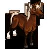 Image quarter horse farmville wiki seeds for Farmville horse