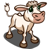 Charolais Calf-icon