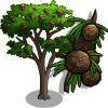 Monterrey tree icon