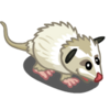 White Opossum-icon