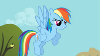 Rainbow Dash talks to Applejack while flying S1E13